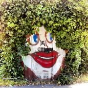 Hecke, Clown, Natur, lustig