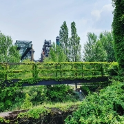 Landschaftspark Duisburg, Lost Place, Natur