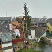 Baumarbeit, Köln, Rodenkirchen