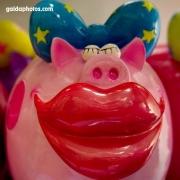 Schwein, Kuss, lustig