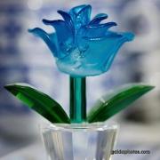 Glas, Blume, blau